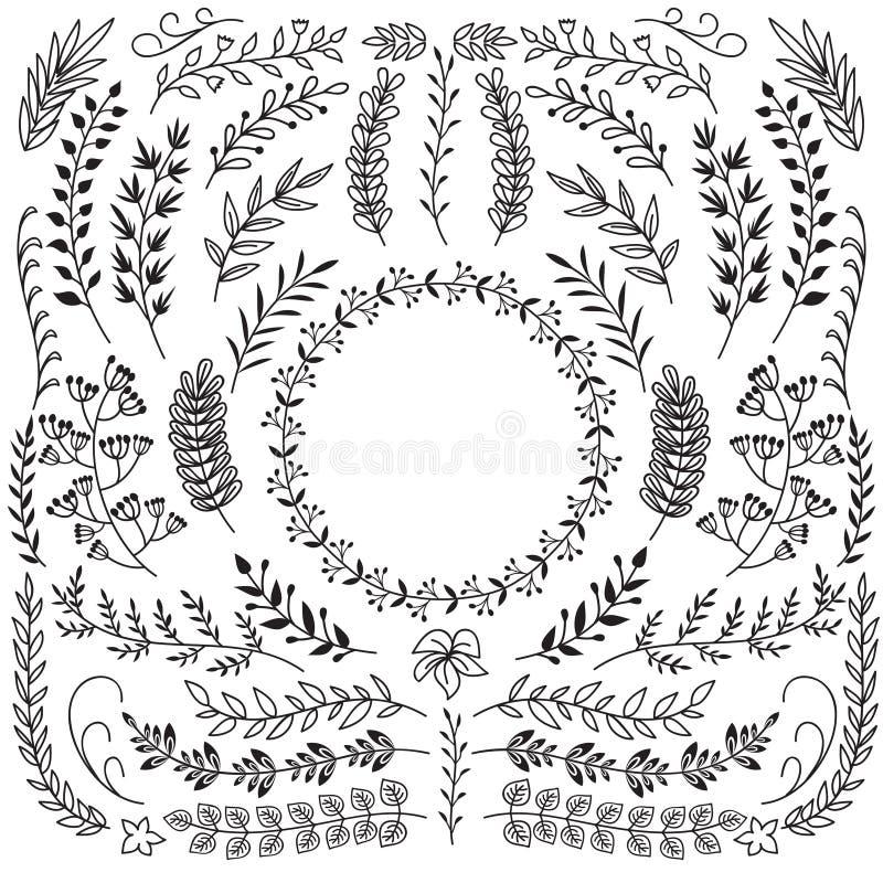 Συρμένοι χέρι κλάδοι με τα φύλλα Διακοσμητικά floral πλαίσια συνόρων στεφανιών Αγροτικό διανυσματικό σύνολο doodle απεικόνιση αποθεμάτων