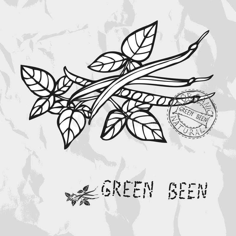 Συρμένος χέρι πράσινος όντας απεικόνιση αποθεμάτων
