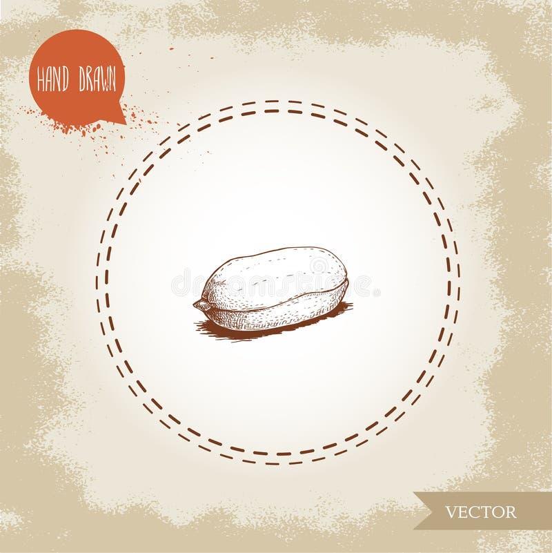 Συρμένος χέρι πυρήνας φυστικιών ύφους σκίτσων Ψημένος ή φρέσκος σπόρος που απομονώνεται στο παλαιό υπόβαθρο κοιτάγματος Οργανική  απεικόνιση αποθεμάτων