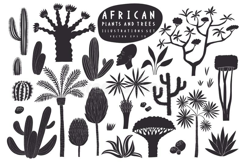 Συρμένο αφρικανικό σύνολο απεικόνισης εγκαταστάσεων διασκέδασης χέρι Κάκτοι, φοίνικες, εξωτικές διανυσματικές απεικονίσεις δέντρω διανυσματική απεικόνιση