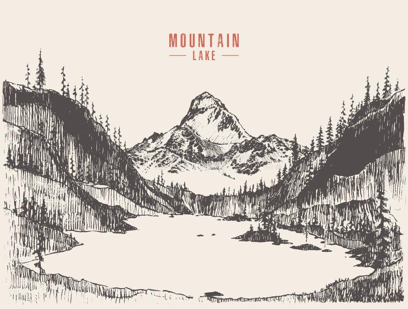 Συρμένο βουνών τοπίων διάνυσμα λιμνών πεύκων δασικό ελεύθερη απεικόνιση δικαιώματος