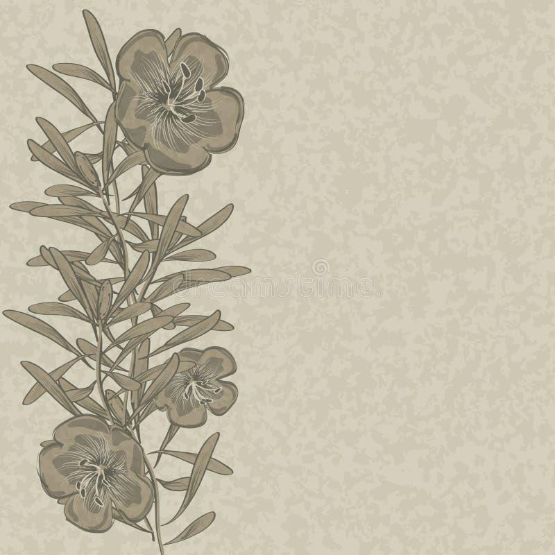 Συρμένο υπόβαθρο λιναριού λουλουδιών χέρι ελεύθερη απεικόνιση δικαιώματος