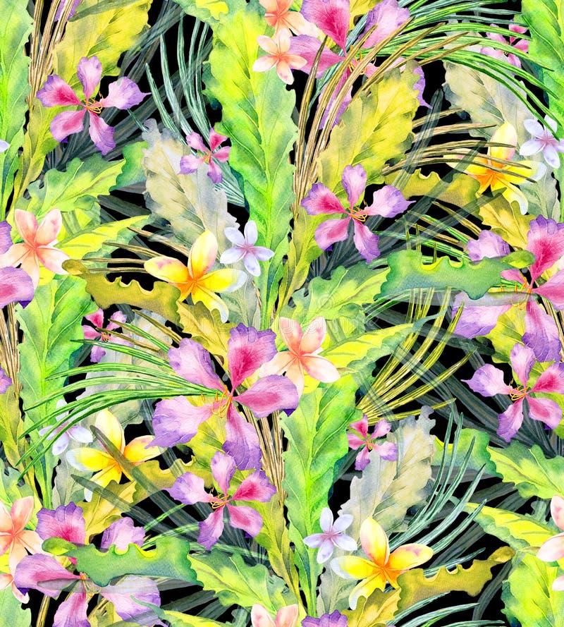 Συρμένο χέρι άνευ ραφής εξωτικό σχέδιο watercolor με τα φύλλα παλαμών, τα φύλλα monstera και τα λουλούδια πιπεροριζών διανυσματική απεικόνιση