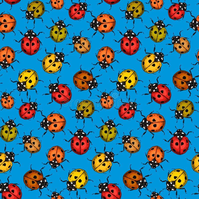 Συρμένο χέρι άνευ ραφής σχέδιο Ladybug διανυσματική απεικόνιση