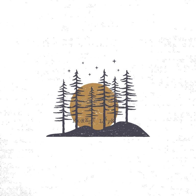 Συρμένο χέρι δάσος με την έννοια ήλιων Κατασκευασμένη διανυσματική απεικόνιση δέντρων πεύκων με τα αστέρια η ανασκόπηση απομόνωσε ελεύθερη απεικόνιση δικαιώματος