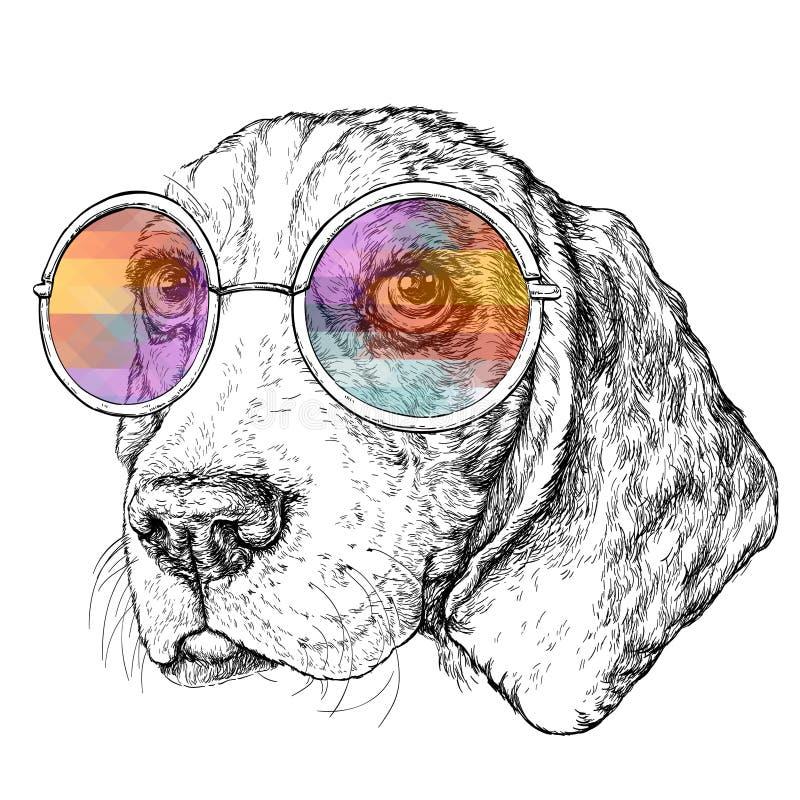 Συρμένο χέρι εκλεκτής ποιότητας αναδρομικό σκίτσο ύφους hipster του χαριτωμένου αστείου σκυλιού λαγωνικών με τα γυαλιά επίσης cor διανυσματική απεικόνιση