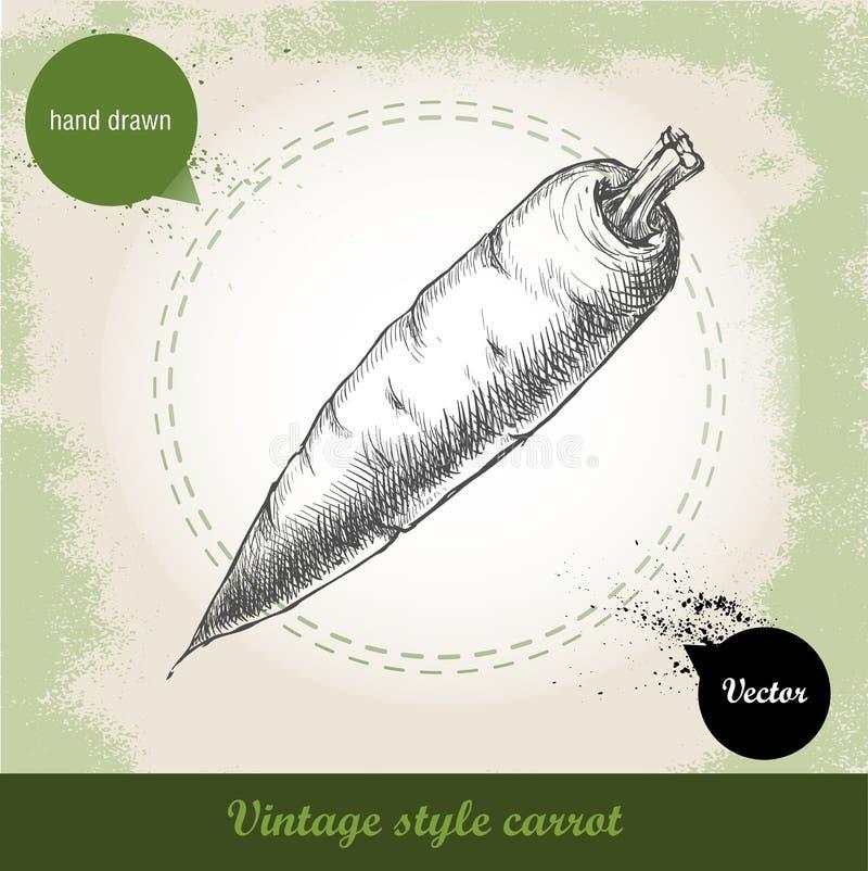 Συρμένο χέρι καρότο Οργανικό υπόβαθρο τροφίμων eco φυτικό ελεύθερη απεικόνιση δικαιώματος