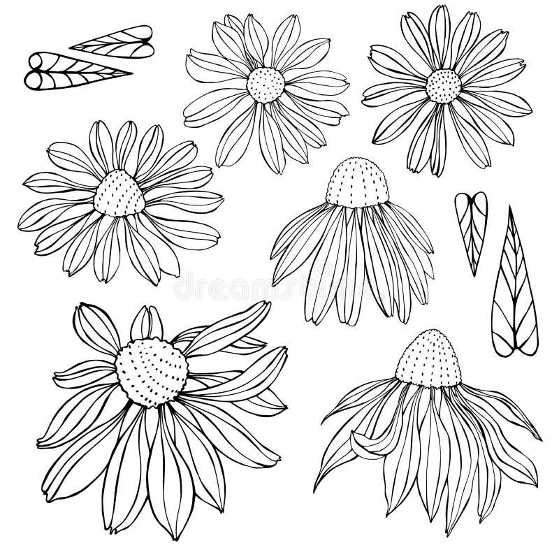 συρμένο χέρι λουλουδιών επίσης corel σύρετε το διάνυσμα απεικόνισης απεικόνιση αποθεμάτων