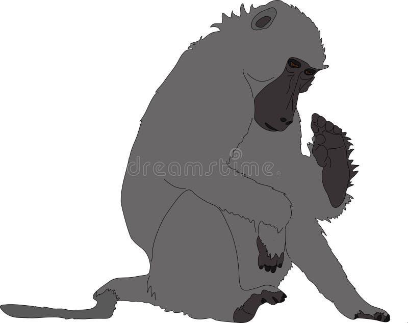 Συρμένο χέρι πορτρέτο άγριο baboon απεικόνιση αποθεμάτων