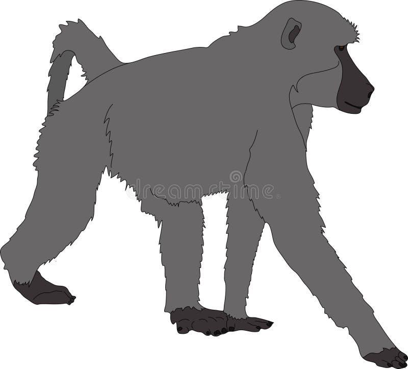 Συρμένο χέρι πορτρέτο άγριο baboon ελεύθερη απεικόνιση δικαιώματος