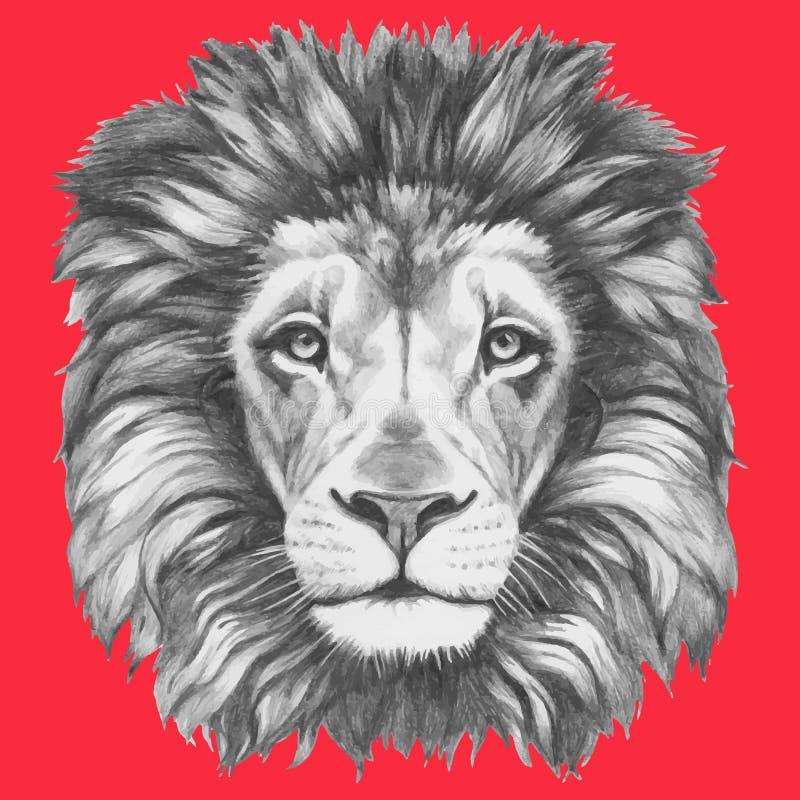 Συρμένο χέρι πορτρέτο του λιονταριού διανυσματική απεικόνιση
