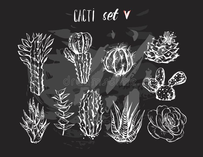 Συρμένο χέρι σύνολο διανυσματικών γραφικός δημιουργικός succulent, κάκτων και συλλογής εγκαταστάσεων που απομονώνεται στο μαύρο υ απεικόνιση αποθεμάτων