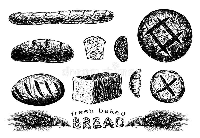 Συρμένο χέρι σύνολο ψωμιού απεικόνιση αποθεμάτων