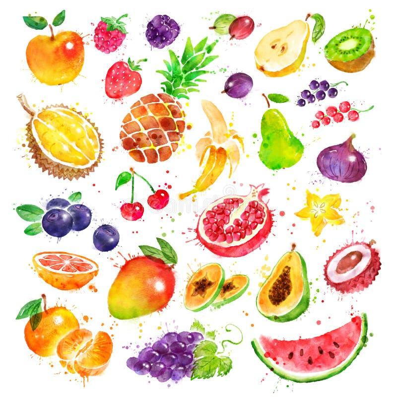 Συρμένο χέρι σύνολο watercolor φρούτων διανυσματική απεικόνιση