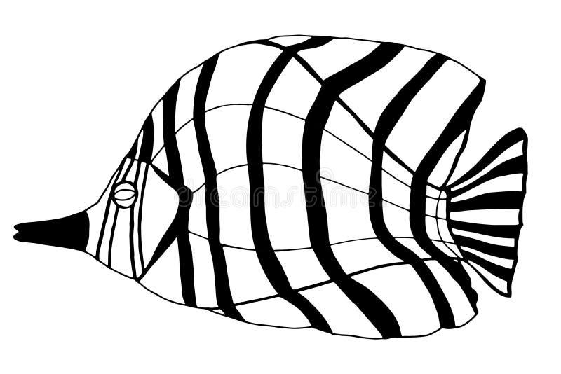 συρμένο χέρι ψαριών ελεύθερη απεικόνιση δικαιώματος