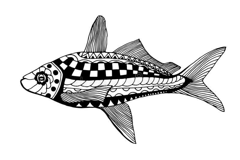 συρμένο χέρι ψαριών διανυσματική απεικόνιση