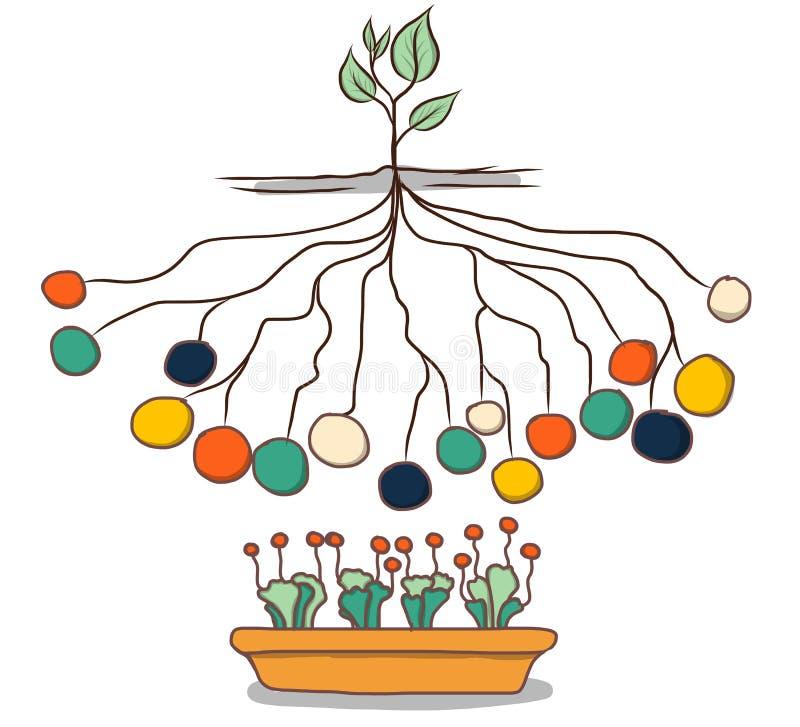 Συρμένο χέρι ύφος προτύπων πληροφοριών γραφικό Δίκτυο δέντρων απεικόνιση αποθεμάτων
