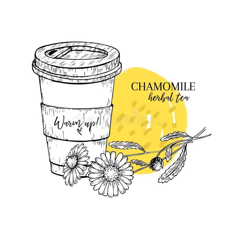Συρμένο χέρι chamomile βοτανικό τσάι για να πάει Φλυτζάνι τσαγιού, λουλούδι μαργαριτών Χαραγμένη Vectror τέχνη Θεραπεία του θερμο απεικόνιση αποθεμάτων