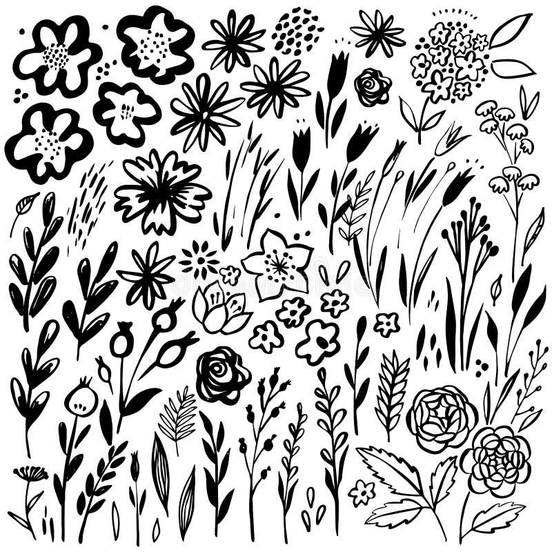 Συρμένο χέρι Floral σύνολο Διανυσματικά floral στοιχεία Συλλογή με τα φύλλα και τα λουλούδια απεικόνιση αποθεμάτων