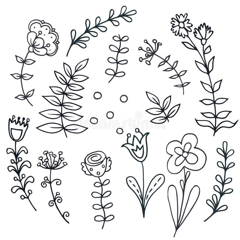 Συρμένο χέρι floral σύνολο με τα φύλλα, λουλούδια διανυσματική απεικόνιση