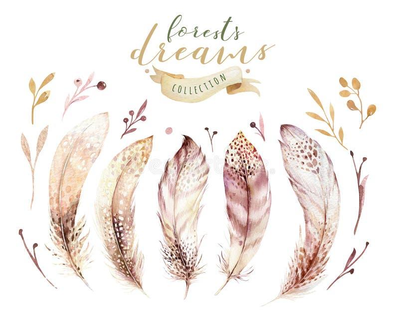 Συρμένο χέρι watercolor σύνολο φτερών έργων ζωγραφικής δονούμενο Φτερά ύφους Boho απομονωμένο απεικόνιση ont λευκό Σχέδιο μυγών π διανυσματική απεικόνιση