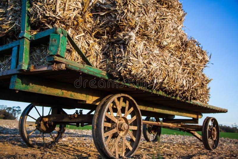 Συσσωρευμένα δέματα σανού στο παλαιό βαγόνι εμπορευμάτων amish στοκ εικόνα