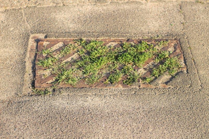 Συσσωρευμένη παλαιά σκουριασμένη αστική απορροή με την ανάπτυξη της χλόης στοκ φωτογραφίες με δικαίωμα ελεύθερης χρήσης