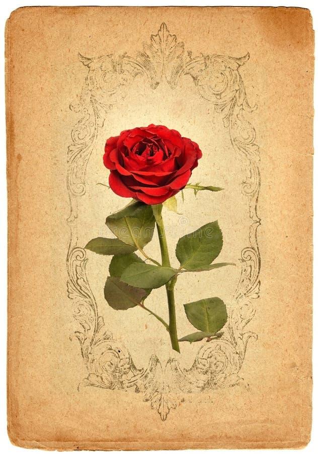 Συστάσεις εγγράφου λουλουδιών. Ράστερ ελεύθερη απεικόνιση δικαιώματος