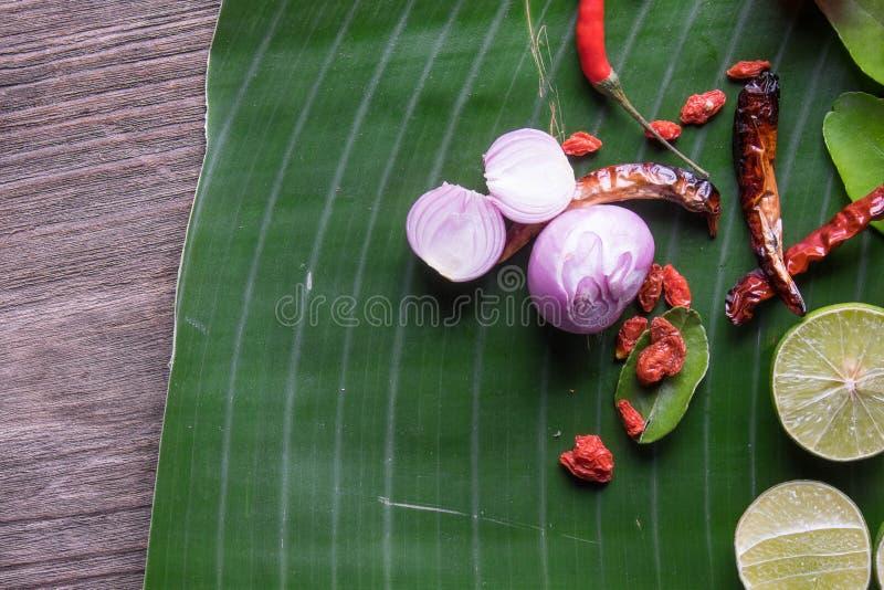 συστατικά Ταϊλανδός χορτ&a στοκ εικόνα με δικαίωμα ελεύθερης χρήσης