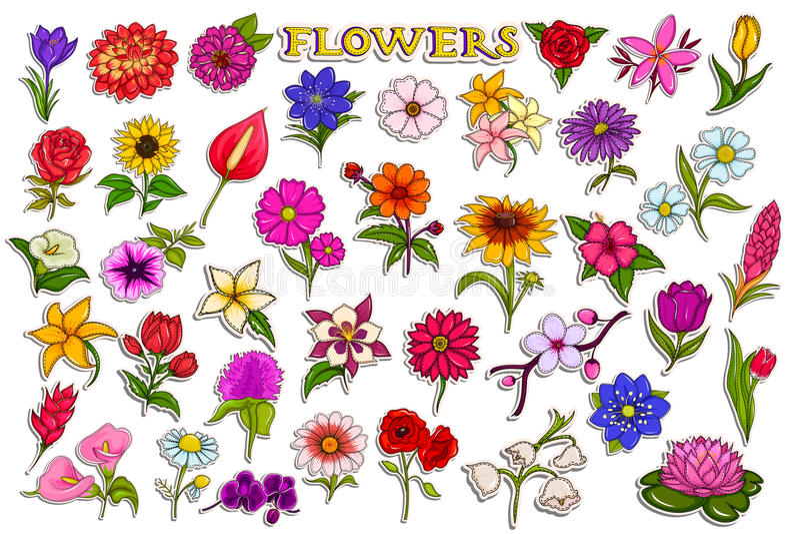 Συλλογή αυτοκόλλητων ετικεττών για το ζωηρόχρωμο φρέσκο λουλούδι διανυσματική απεικόνιση