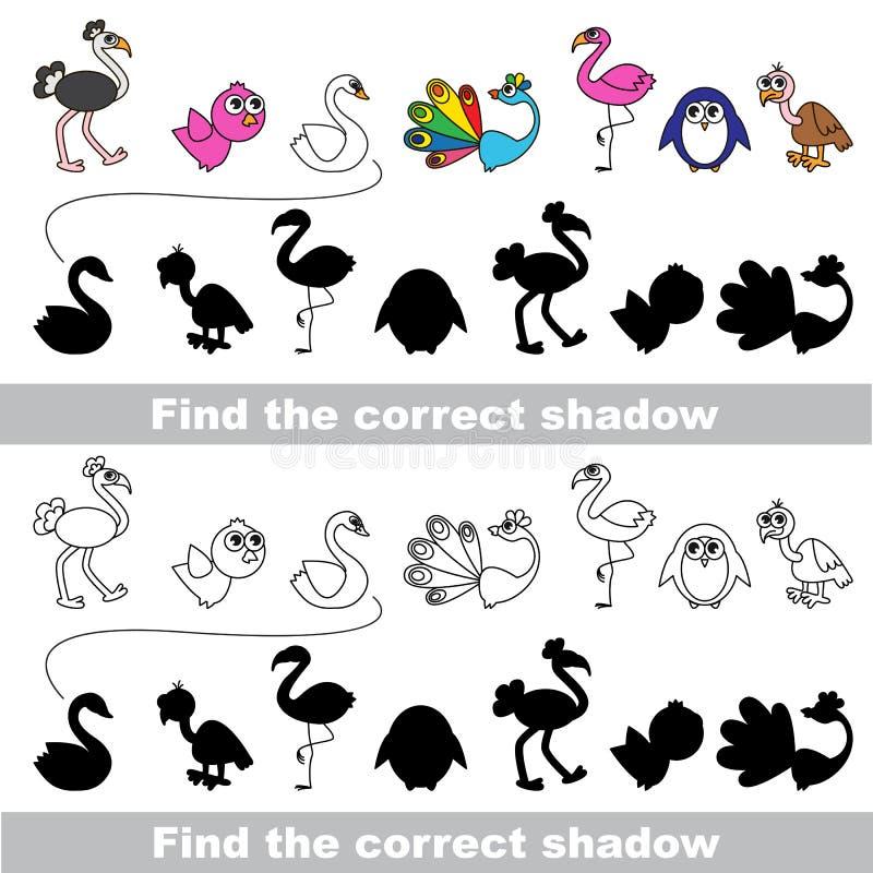 Συλλογή πουλιών Βρείτε τη σωστή σκιά διανυσματική απεικόνιση
