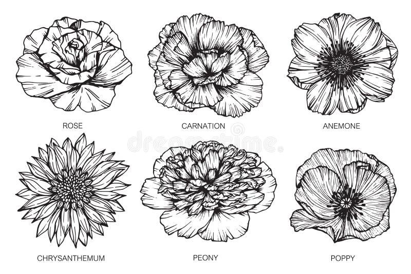 Συλλογή του στρεθίματος της προσοχής και του σκίτσου λουλουδιών με την γραμμή-τέχνη στο λευκό διανυσματική απεικόνιση