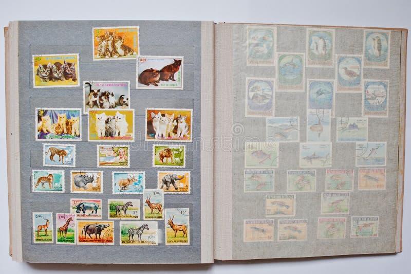 Συλλογή των γραμματοσήμων στο λεύκωμα από τη Ισημερινή Γουινέα, Bu στοκ εικόνες