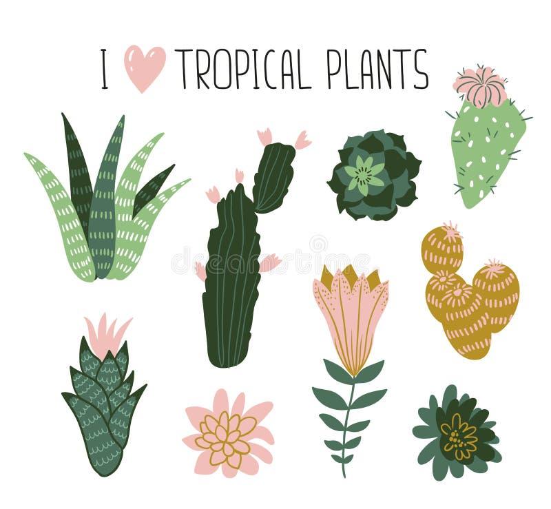 Συλλογή των τροπικών εγκαταστάσεων, κάκτοι, succulents, λουλούδια το σχέδιο εύκολο επιμελείται τα στοιχεία στο διάνυσμα διανυσματική απεικόνιση