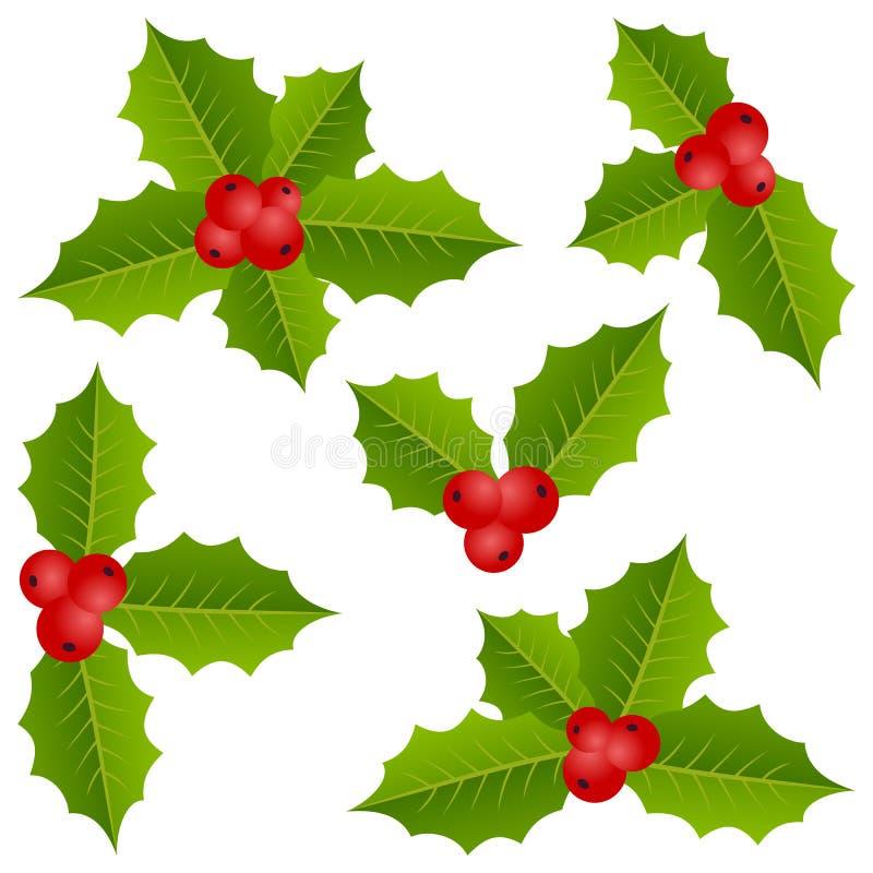 Συλλογή Χριστουγέννων μούρων της Holly ελεύθερη απεικόνιση δικαιώματος