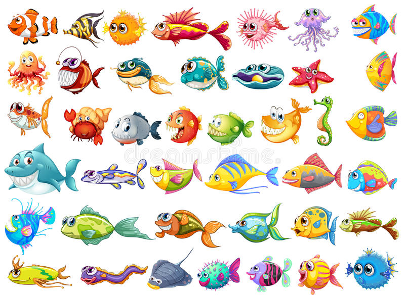 Συλλογή ψαριών ελεύθερη απεικόνιση δικαιώματος