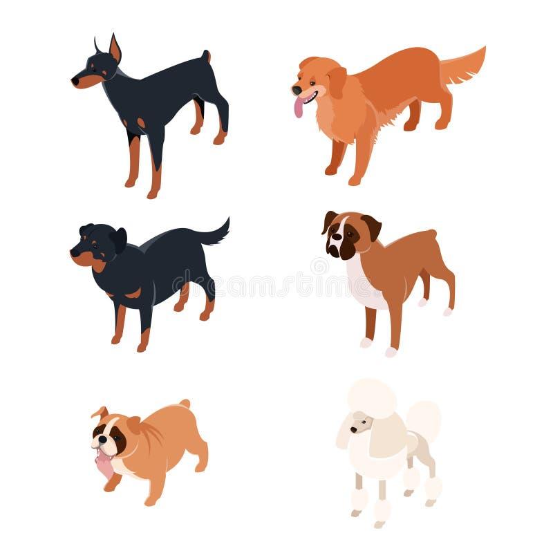 Συλλογή isometric dogs1 ελεύθερη απεικόνιση δικαιώματος
