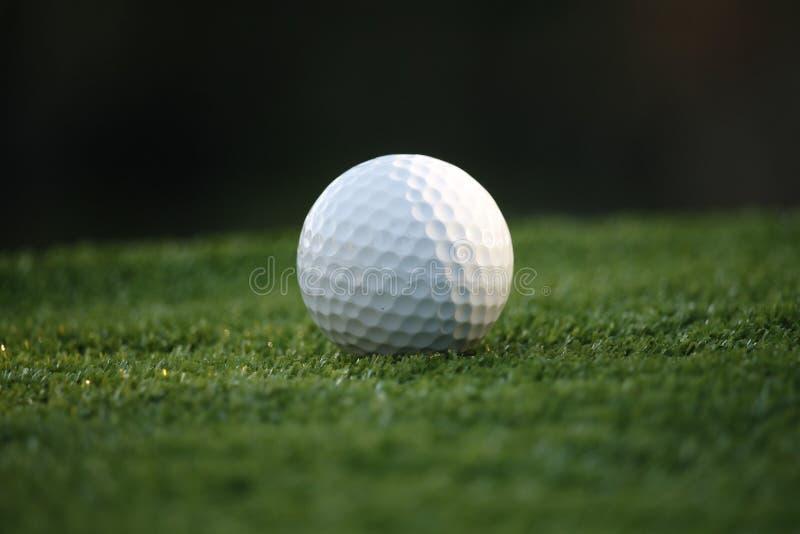 Σφαίρα γκολφ σε πράσινο στο όμορφο υπόβαθρο γηπέδων του γκολφ τη νύχτα στοκ φωτογραφίες με δικαίωμα ελεύθερης χρήσης