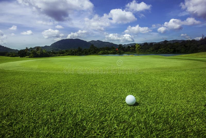 Σφαίρα γκολφ στη σειρά μαθημάτων στοκ εικόνες