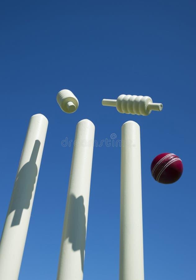 Σφαίρα γρύλων και wicket στοκ φωτογραφίες με δικαίωμα ελεύθερης χρήσης