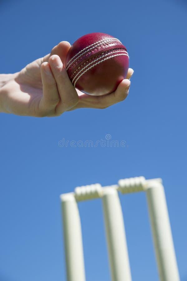 Σφαίρα γρύλων και wicket στοκ εικόνες