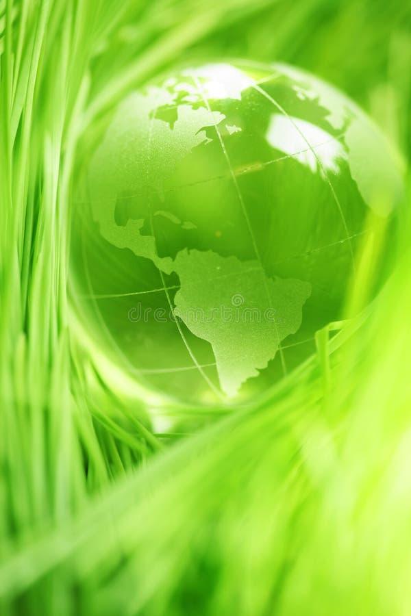Σφαίρα γυαλιού στα φύλλα στοκ φωτογραφία με δικαίωμα ελεύθερης χρήσης