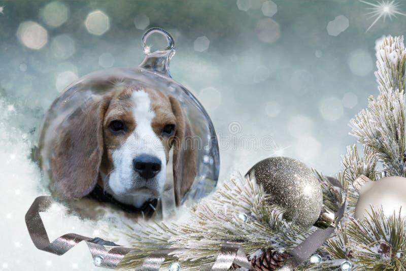 Σφαίρα Χριστουγέννων με το σκυλί λαγωνικών στο χιόνι στοκ φωτογραφία με δικαίωμα ελεύθερης χρήσης
