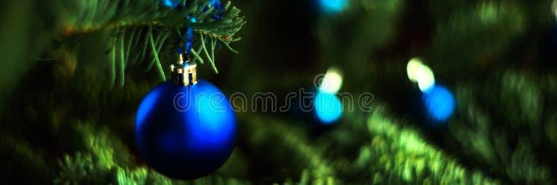 Σφαίρα Χριστουγέννων στο έλατο κλάδων Το σχήμα του εμβλήματος, ευρέως πολύ στοκ εικόνες με δικαίωμα ελεύθερης χρήσης
