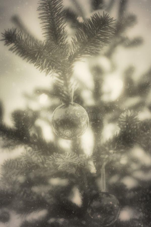 : Σφαίρες Χριστουγέννων και δέντρο πεύκων στοκ εικόνες