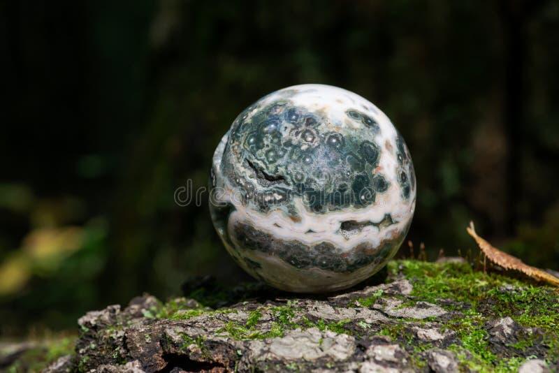 Σφαιρική ωκεάνια σφαίρα ιασπίδων με κρυσταλλωμένος vugs από τη Μαδαγασκάρη στο βρύο, το bryophyta και το φλοιό, rhytidome στο δάσ στοκ εικόνα