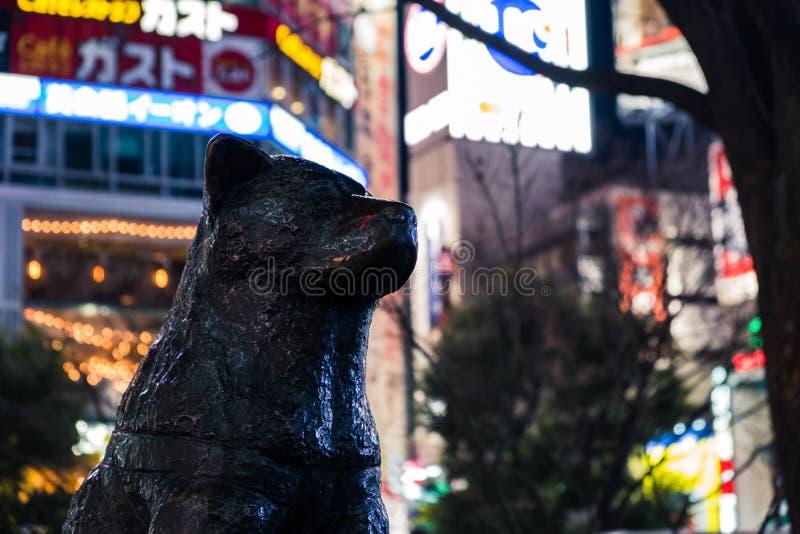 Σφιχτός πυροβολισμός του αγάλματος του σκυλιού Hachiko σε Shibuya που διασχίζει με τους φωτεινούς ζωηρόχρωμους πίνακες διαφημίσεω στοκ εικόνες