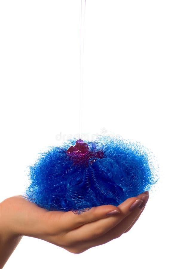 σφουγγάρι σαπουνιών χερ&i στοκ εικόνες