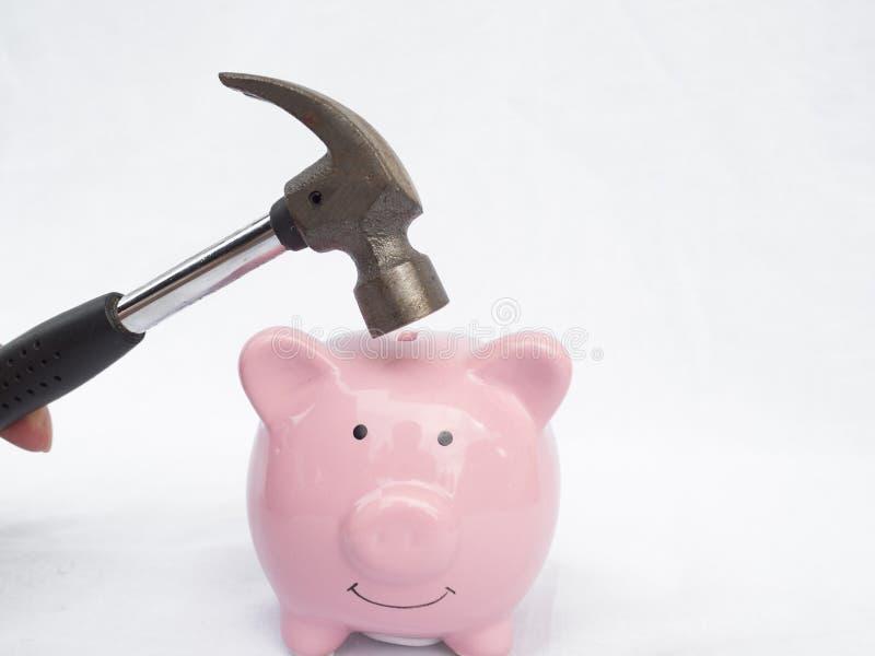 Σφυρί Στοχεύοντας στην ροζ Κουμπαράς, έτοιμη για νέες επενδύσεις στην επιχειρηματική ιδέα στοκ φωτογραφίες