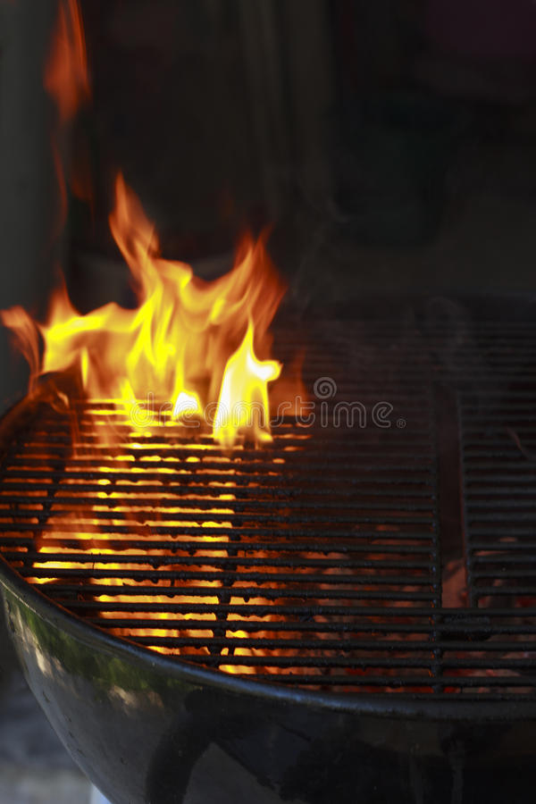 Σχάρα στην πυρκαγιά στοκ φωτογραφίες με δικαίωμα ελεύθερης χρήσης